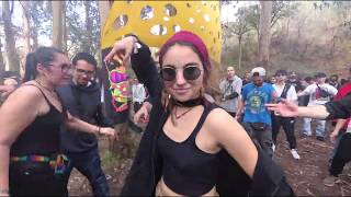 Trance Party in the Woods - Portugal