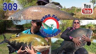 Programa Fishingtur na TV 309 - Pesk Pag dos Amigos