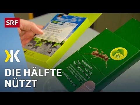 Ameisenköder im Test: Einige Produkte taugen wenig  | 2018 | SRF Kassensturz