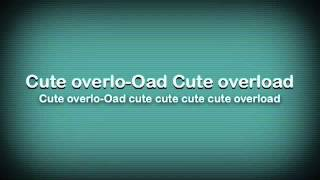 Cute Overload by Parry Gripp Lyrics
