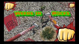 Removing weeds from Rock Landscape | using hula/stirrup hoe