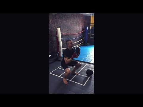 針對拳擊,泰拳專項訓練模式