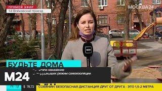 Власти Москвы уточнили наказание для пенсионеров, нарушивших режим самоизоляции - Москва 24