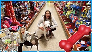 Buying Everything My Dogs Touch!