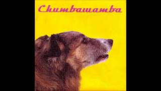 Ladies for Compassionate Lynching - Chumbawamba (WYSIWYG Album)
