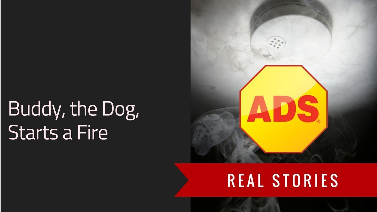 Mary &#8211;<br> Buddy the Dog Starts a Fire