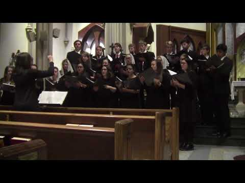 Northeast Catholic College Polyphony Tour 2017 - Ave Maria