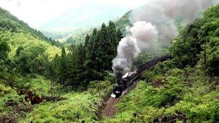 Chris Rea - Steam Train Blues