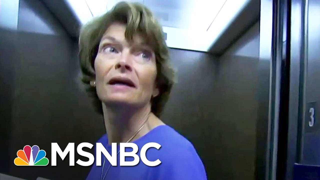 Sen. Lisa Murkowski Opposed To Obamacare Repeal Without A Replacement   MSNBC thumbnail