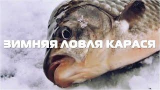 Зимняя рыбалка на карася в подмосковье