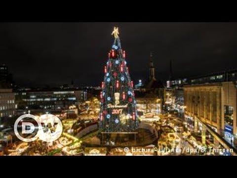 De onde vem a tradição da árvore de Natal?