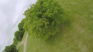 When the crew gets together | DJI FPV freestyle