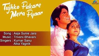 Tujhko Pukare Mera Pyaar : Aaja Sunle Jara Full Audio Song   Anil Nagrath, Jay Kalgutkar  