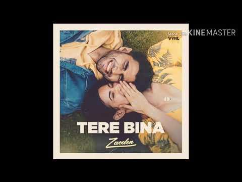 Tere Bina - Zaeden | ft. Amyra Dastur | Kunaal Ver -New Single | With Download Link