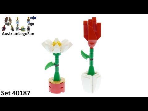 Vidéo LEGO Saisonnier 40187 : Fleurs décoratives LEGO