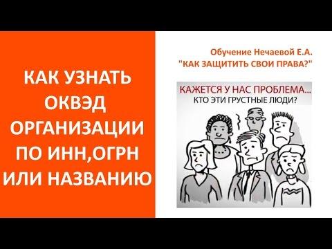 Как узнать ОКВЭД организации. Унать виды деятельности по ИНН