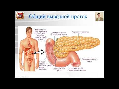 Лечение при обострении хронического простатита