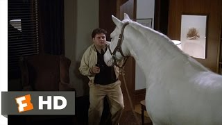 Flounder Gets Even - Animal House (4/10) Movie CLIP (1978) HD