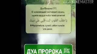 Дуа  Пророка