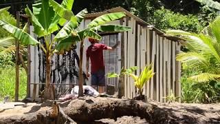Izolag - GRAFFITI - Povoado (Pequena Jamaica)