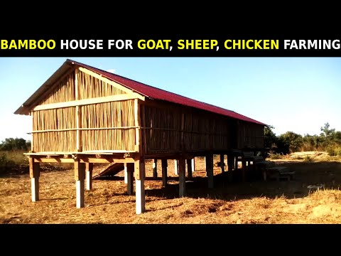 , title : 'Goat, Sheep, Chicken Farming Shed/House | Bamboo Shed for Goat/Sheep/Chicken Farming at Low Cost