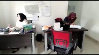 [ SEASA EXPRESS ] Kantor Ekspedisi Jasa Kirim Mobil Jakarta