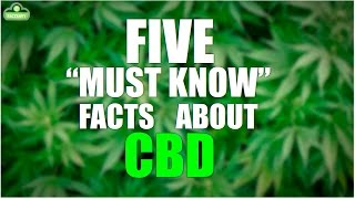Five facts about CBD