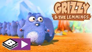 Grizzy I Lemingi | Zamiana Miejsc | Boomerang
