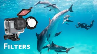 All About GoPro Filters Underwater