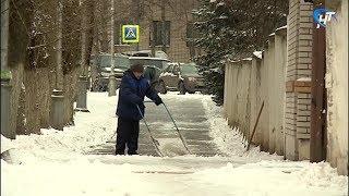 Великий Новгород минувшей ночью пережил первый в этом сезоне настоящий снегопад