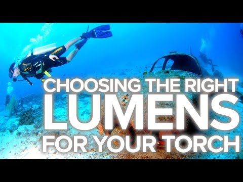 Choosing The Right Lumens For Your Torch