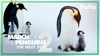 Witness the rise of a new dynasty. Morgan Freeman and the Emperor Penguins return in March of the Penguins 2: The Next Step. Premieres March 23, only on Hulu. ...