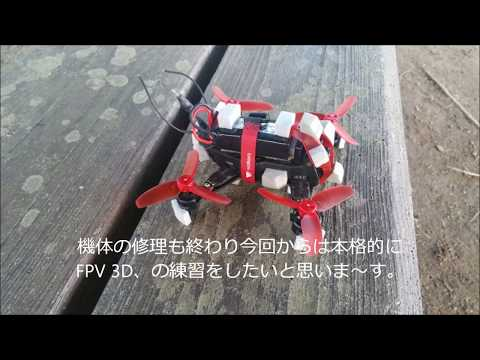 walkera-rodeo-110-file-no-008-fpv-3d-2nd-training