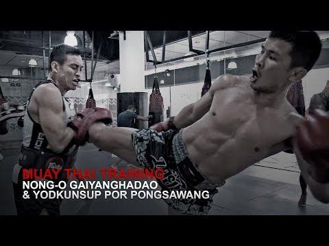 Muay Thai World Champion Nong-O Gaiyanghadao Is Back!