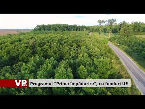 """Programul """"Prima împădurile"""", cu fonduri UE"""