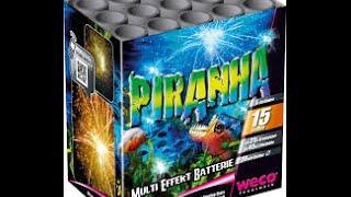 Weco Aligator /Piranha 2015 Charge
