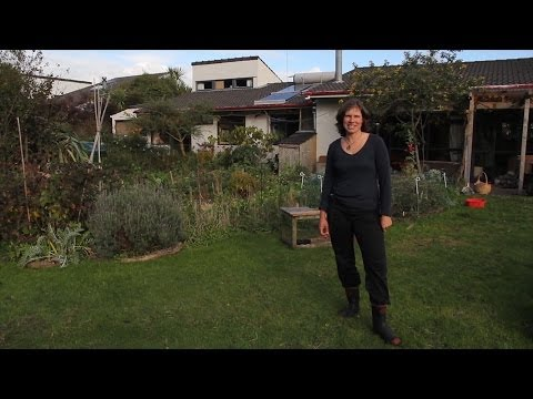 Quaker Acres: Mandy Brookes Super-productive home garden