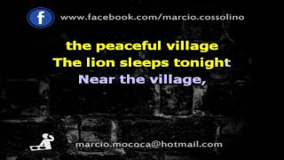 Tokens   The Lion Sleeps Tonight   Karaoke