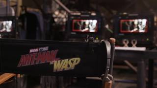 Ant-Man and the Wasp (2018) Video