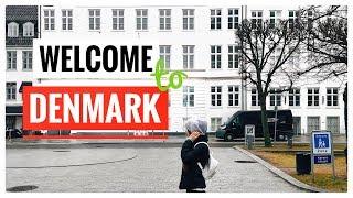 Переезд в Данию🇩🇰.Мы переехали в Копенгаген! Зачем? Как? Надолго?