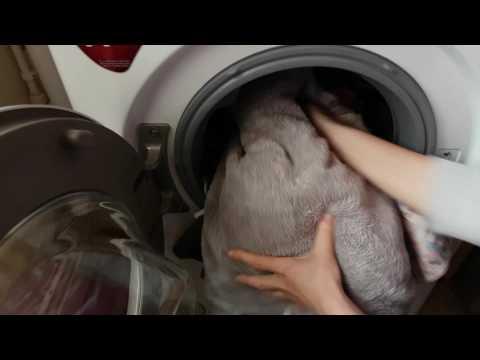 LG F4J5TN3W 8kg A+++ Washing Machine Review
