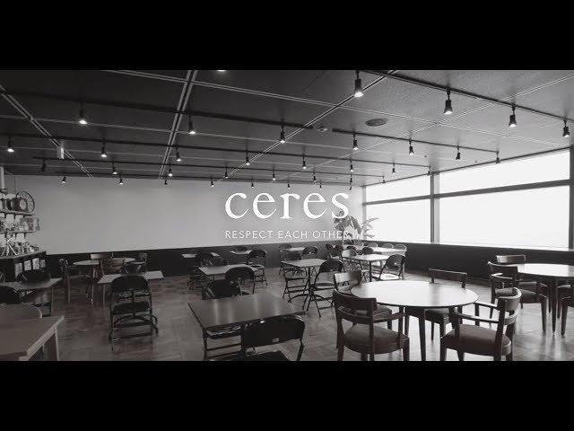 株式会社セレス~システムエンジニア担当インタビュー動画~