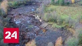 Во Владимирской области исчезло лесное озеро - Россия 24