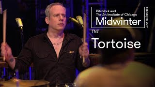 Tortoise | TNT Full Set | Midwinter 2019