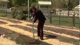 Preparing Soil For Planting An Organic Vegetable Garden