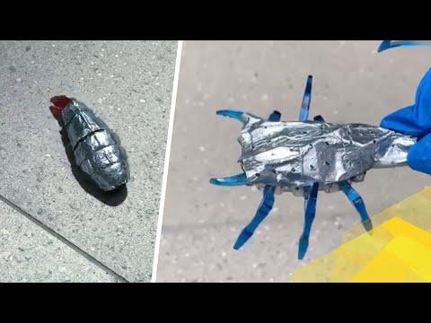 Биоморфные батареи запасут энергию для роботов подобно природному жиру