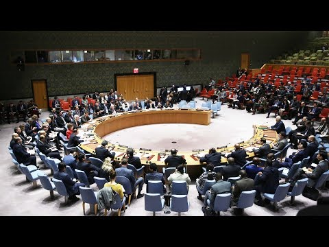 UN Security Council adopts resolution on 30-day ceasefire in Syria