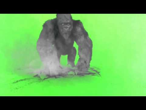 Download Green Screen 40 Essential Effects | Dangdut Mania
