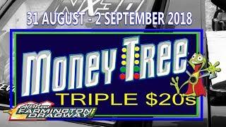 Money Tree Triple $20