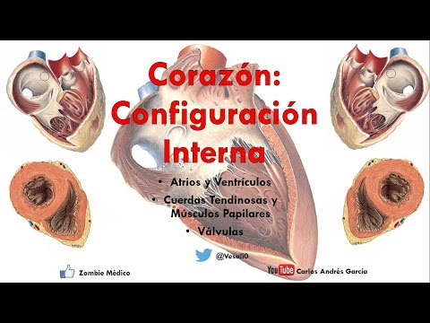 Hipertensiva o isotónica